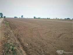 936 ml. con frente al camino-VENTA DE TERRENO AGRICOLA 3.4 has. EN SAN CLEMENTE, PISCO