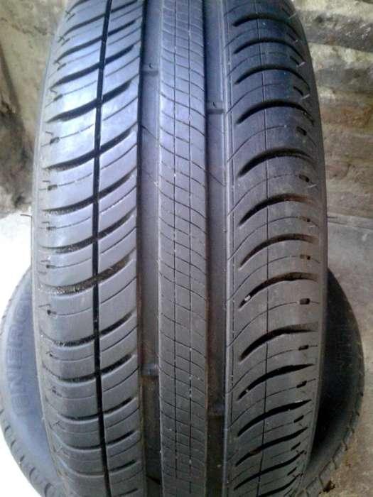 Cubiertas Michelin 175/65 R14