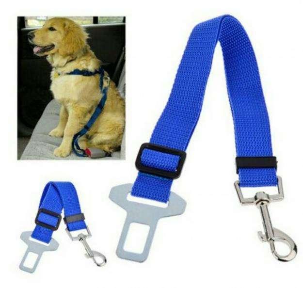 Correa De Seguridad Para Perro En Carro 3 Colores Disponible