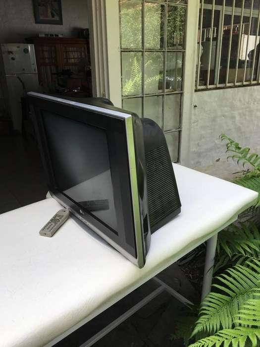 television, pantalla plana, 21 , LG