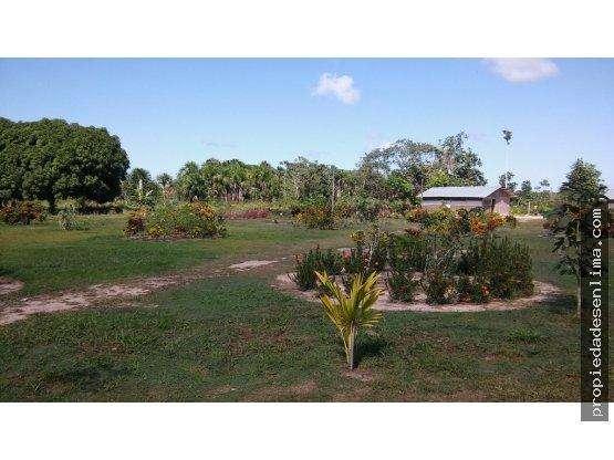 Vendo Terreno 150 Hás. en Pucallpa, Ucayali
