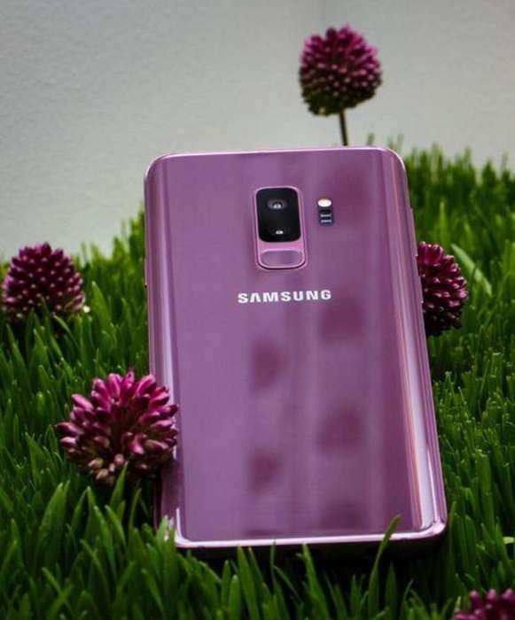 S9 Plus Purpura