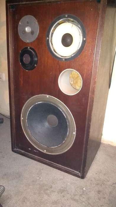 2 Cajas Acústicas con Parlantes