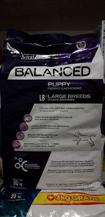 Balanced Puppy Raza Grande 20k