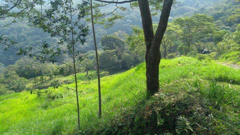 Cod. VBHHI201 Finca En Venta En Villavicencio Buena Vista
