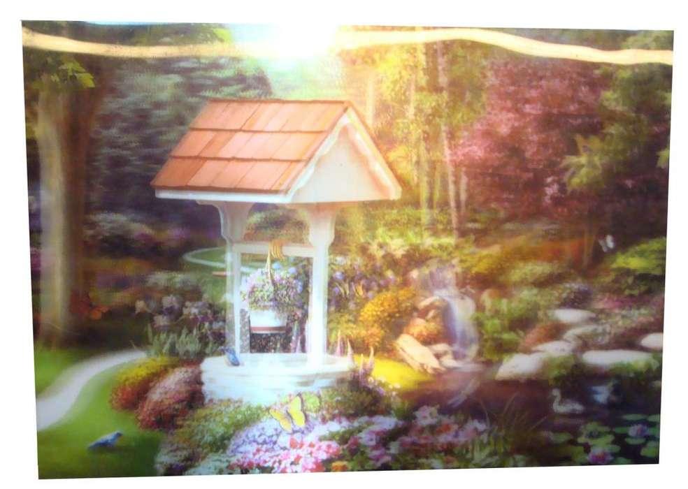 Lamina 3d Ciudad China Pozo Jardin 34 X 24 Cms Paisaje Flor 25