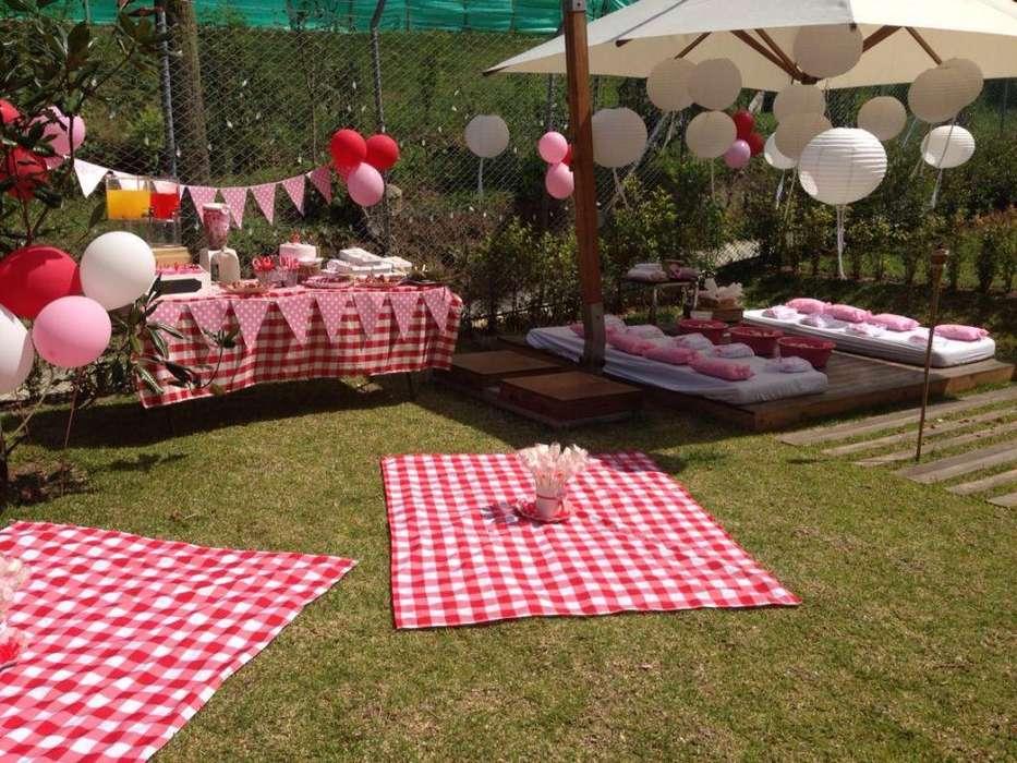 alquiler manteles picnic