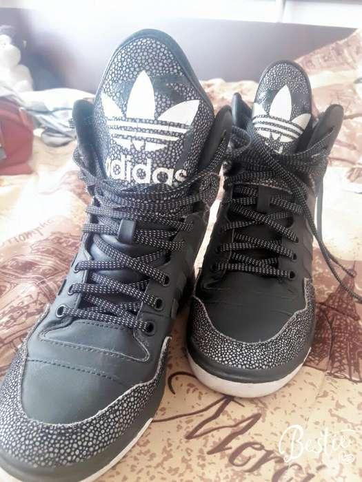 Tenitacon Adidas Originales