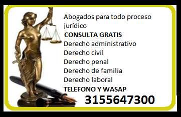 ABOGADOS CON EXPERIENCIA PARA CADA CLASE DE PROCESO JURÍDICO 3155647300