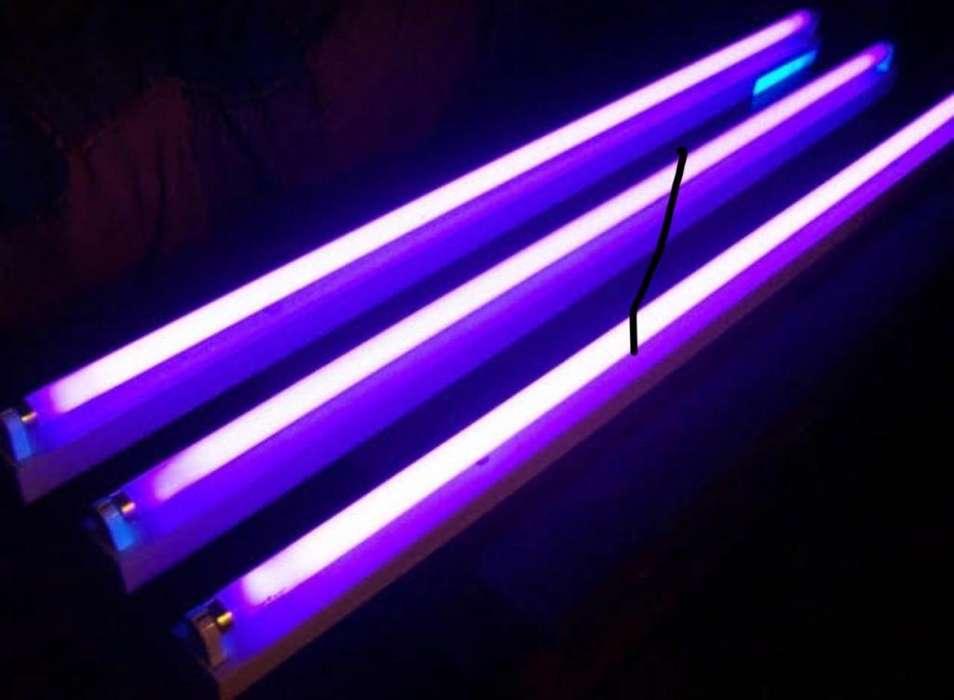 Luces Ultravioleta (Fluorescente)
