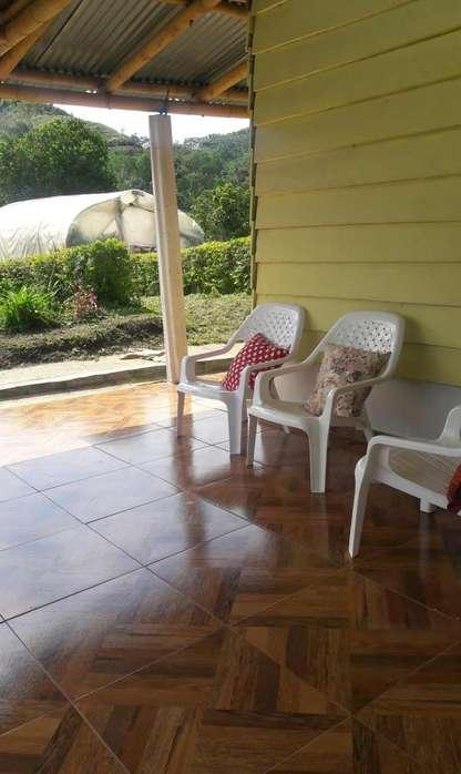 Finca,en producion en Aguacate,Platano,Cafe,cedro,Pitaya