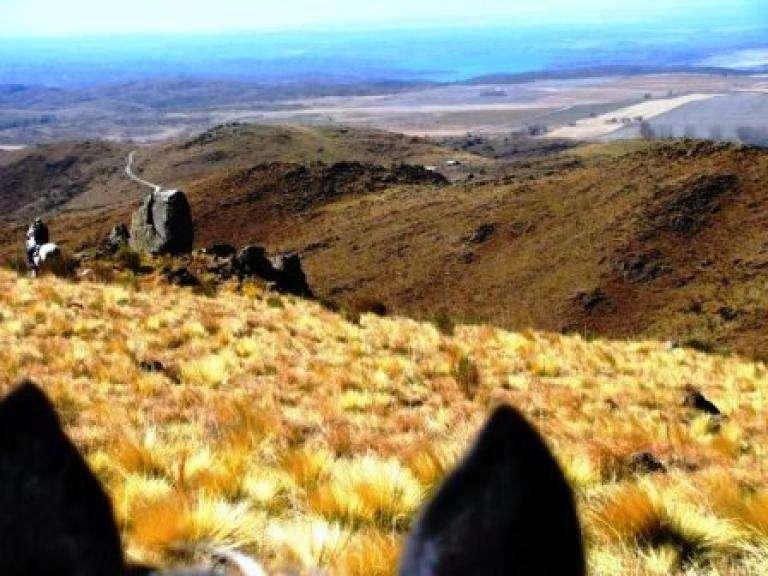 Venta 4 hectáreas - Estancia Grande - R. Villorco - San Luis