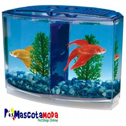 Mini acuario en acrilico para peces betta bettera decorativa