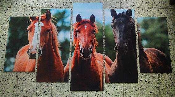 Cuadros Personalizados Impresos En Tela 120 x 70 cm