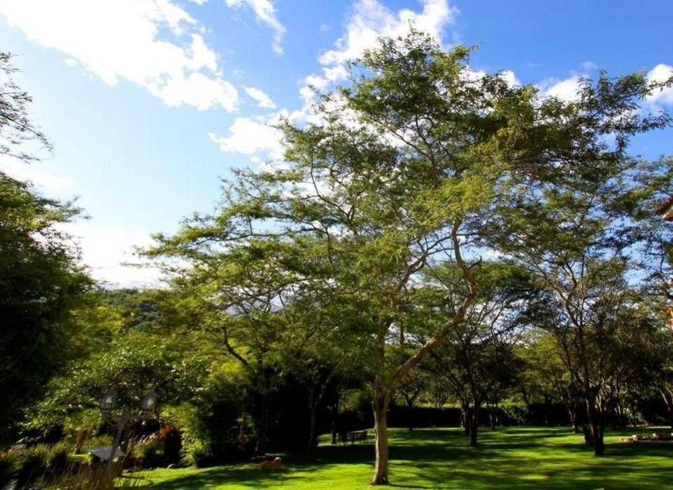 Terrenos de venta La Vina, Cumbaya. 1,000 mts terrenos <strong>plano</strong>s