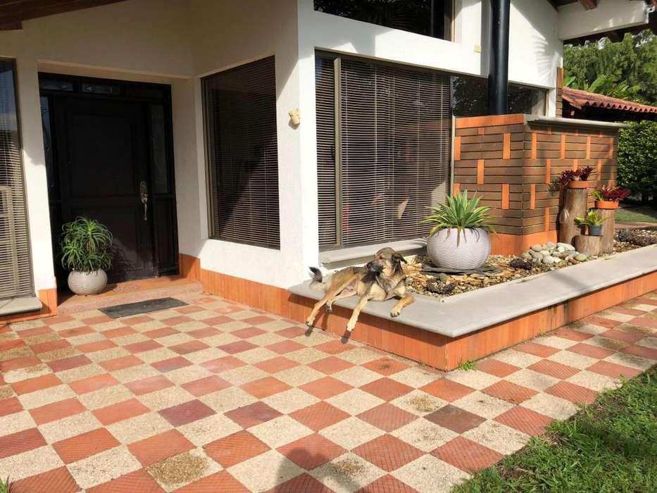 hermosa casa campestre avenida centenario vereda san Juan Salento, Quindío,
