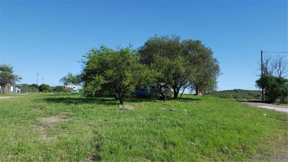 Tierra Alta 100 - UD 15.000 - Terreno en Venta