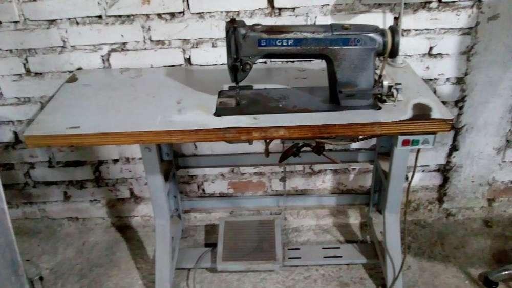 Maquina de Coser Industrial Tapicería