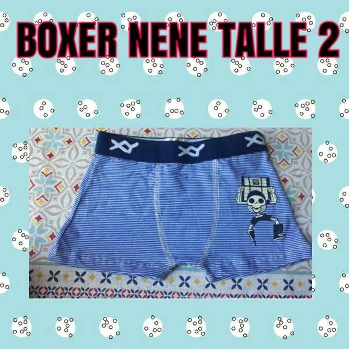 Boxer T. 2
