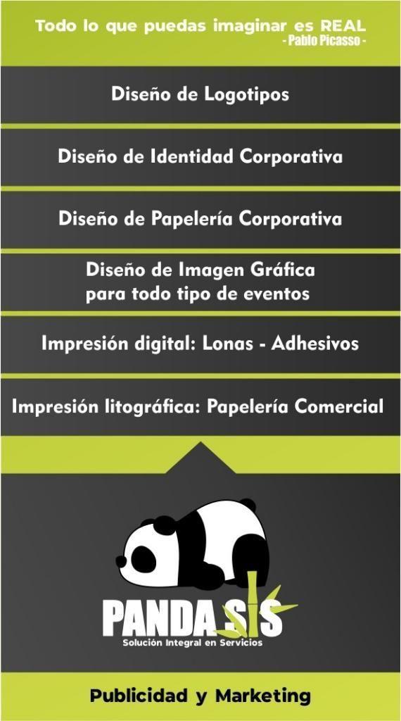 Panda Sis , Servicios Profesionales