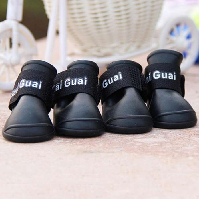 Zapatos para Perro