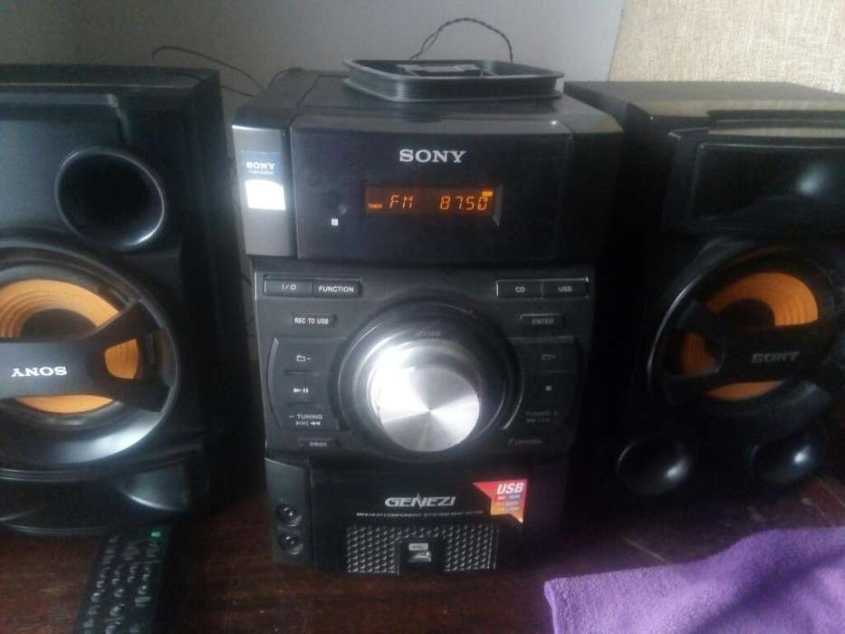 Vendo Equipo de Musica Sony