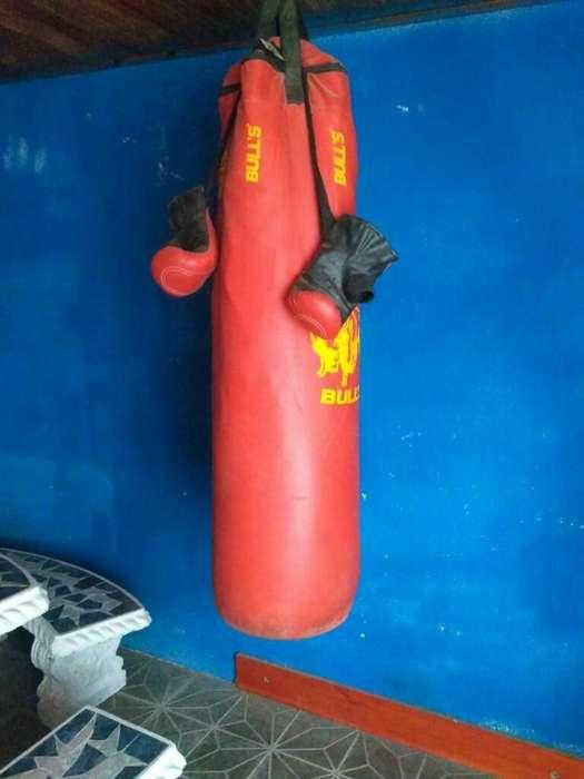 Bolsa de Kick Boxing Guantes