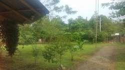 Finca con lote de terreno en el sector de palomino - wasi_560172
