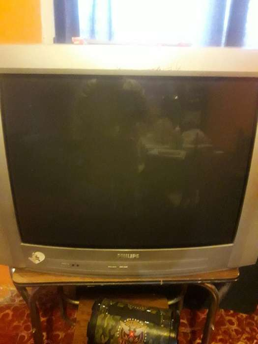 Vendo Tv Phillips 29 Pulgadas con Contro