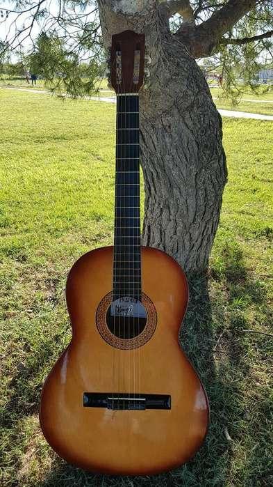 Guitarra Clasica Palmer