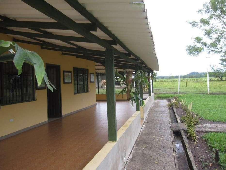 Finca ubicada en Puerto Boyacá (Boyacá) de 300 hectáreas.