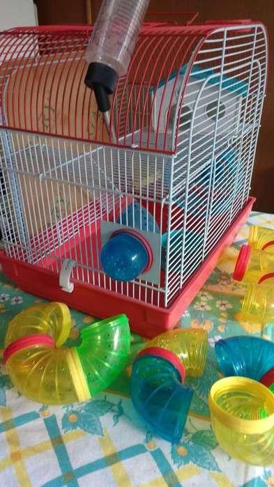 Jaula para hamster 40x40 con accesorios