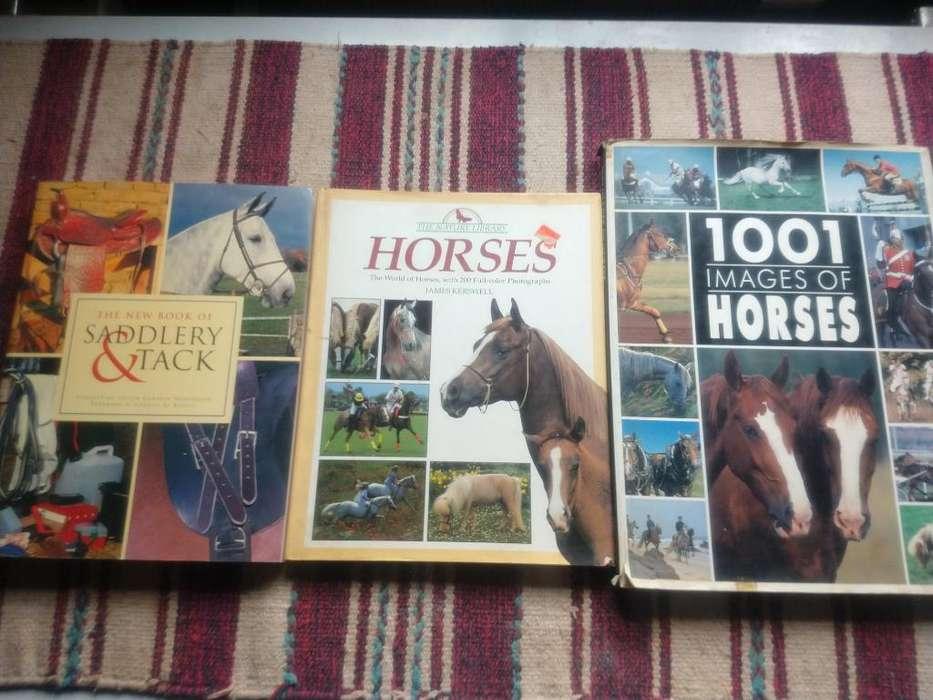 Libros de Caballos Horses