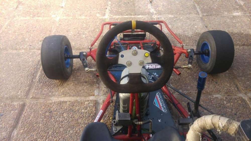 VENDO o PERMUTO ..... Karting M101 con motor 150cc
