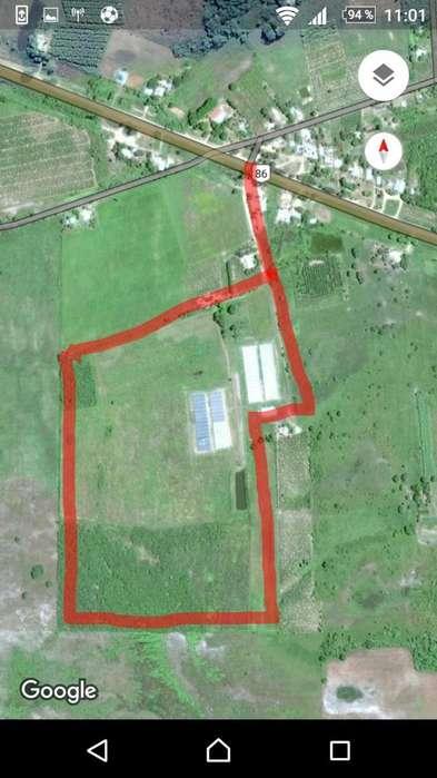 Vendo Campo 23 hectareas con 60 techos de invernadero