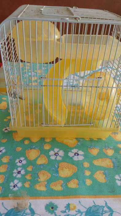 Jaula para hamster 25x25 con accesorios