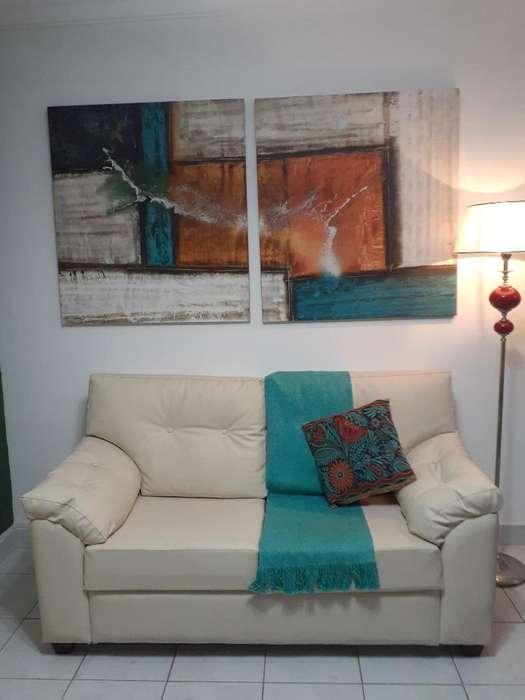 Sofa Dos Cuerpos 1.60 X 0.80