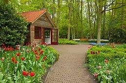 Jardinero mantenimiento de parques