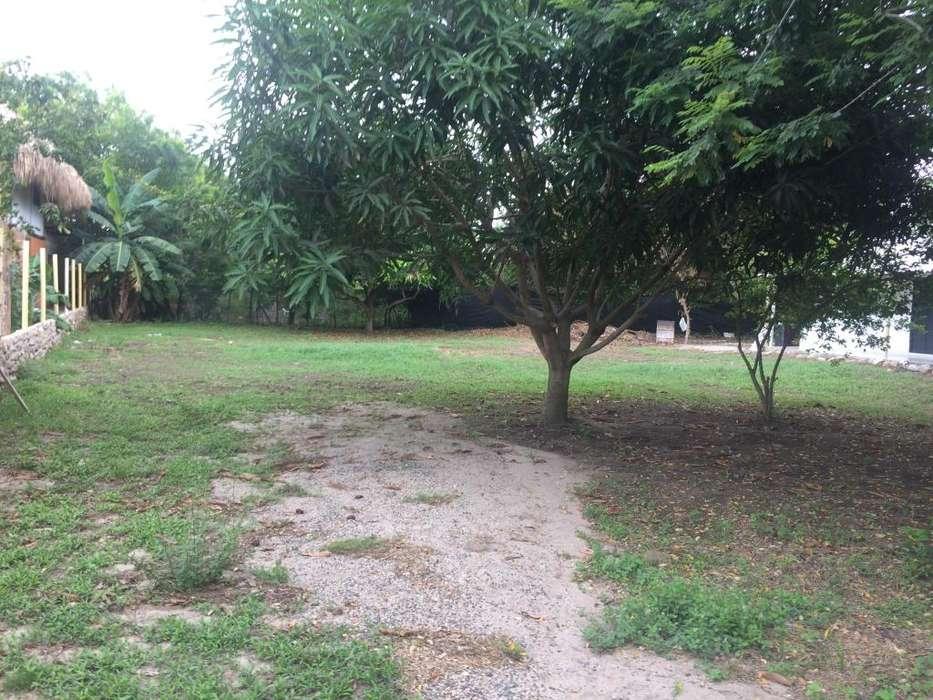 Venta Propiedad - Palomino, Guajira.