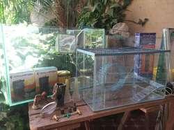 Peceras, Hamstera Y Accesorios