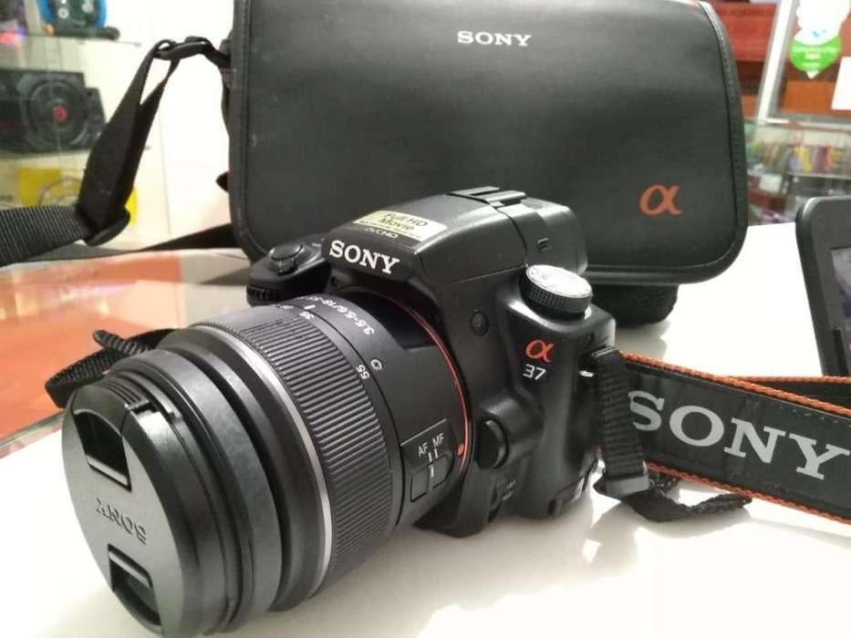 Camara Sony Alpha Slt-a37
