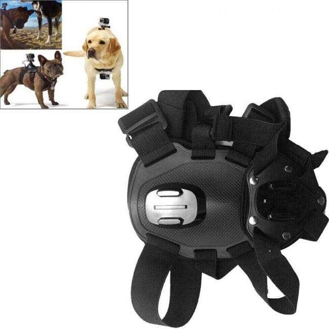 Arnés o Soporte Gopro para Perro <strong>accesorios</strong> Gopro Medellin
