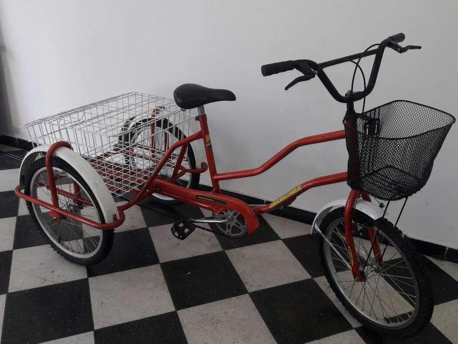 Bicicleta Triciclo 3 Ruedas, Tricicleta