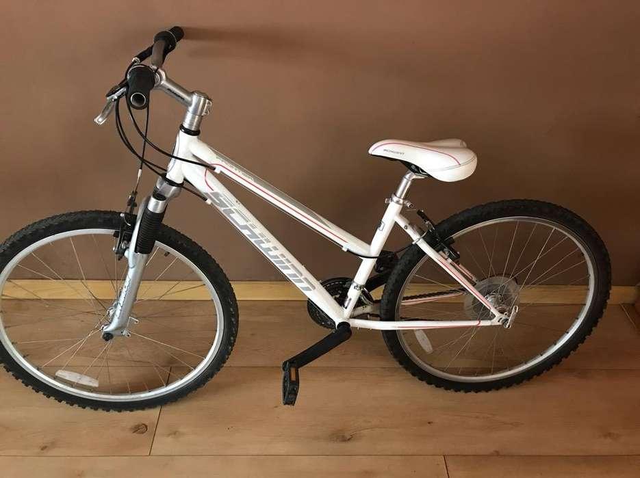 <strong>bicicleta</strong> Schwinn