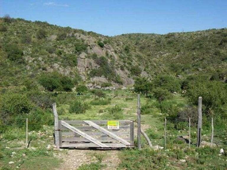 Campos Mixtos sobre Rio Candelaria