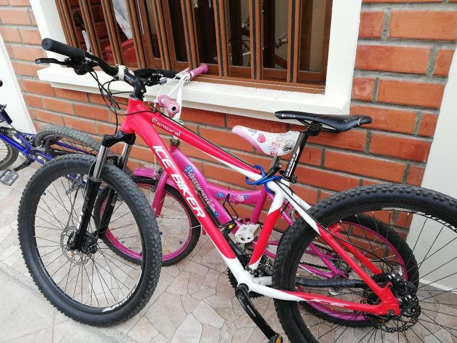Bicicleta Ice Biker
