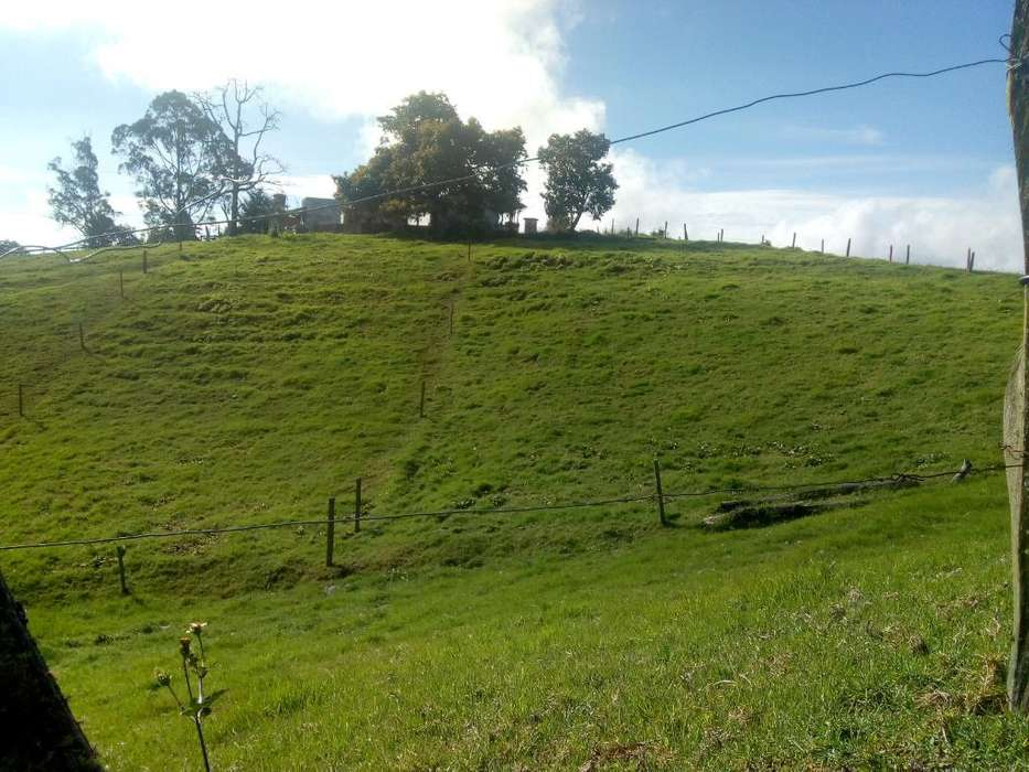 Lote 2000m2