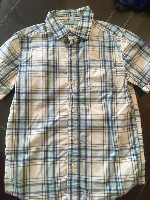 Camisa Talla 7 Carters