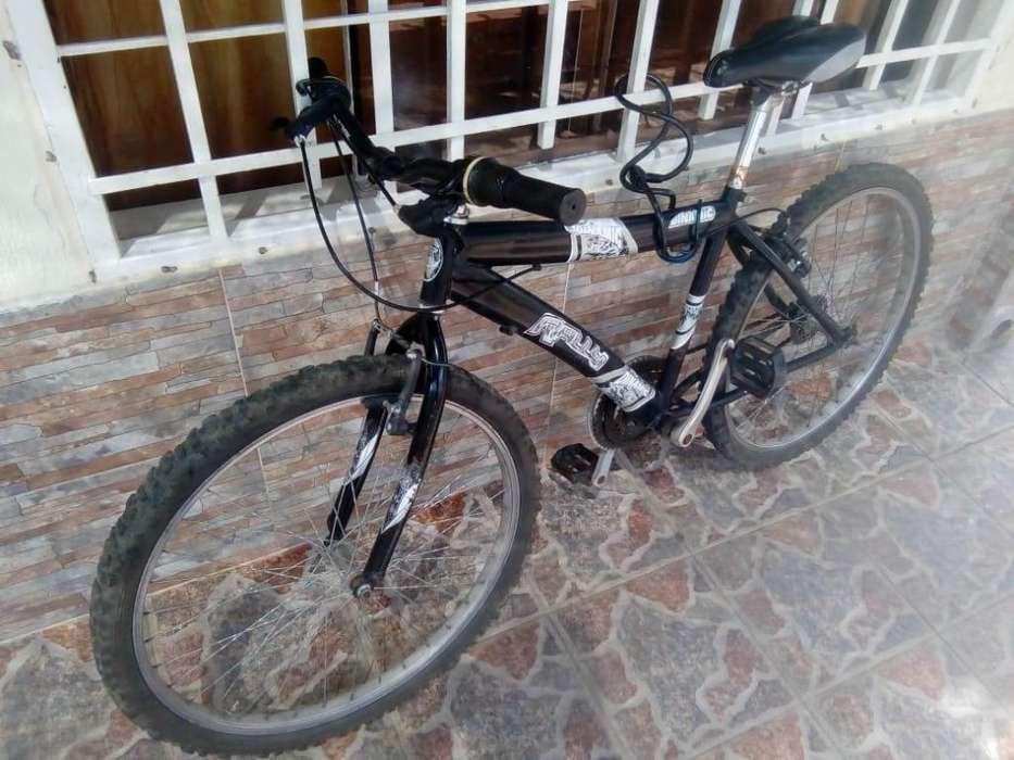 bicicleta marca Rally