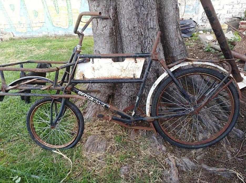 Bici C Porta Canasto . Permuto
